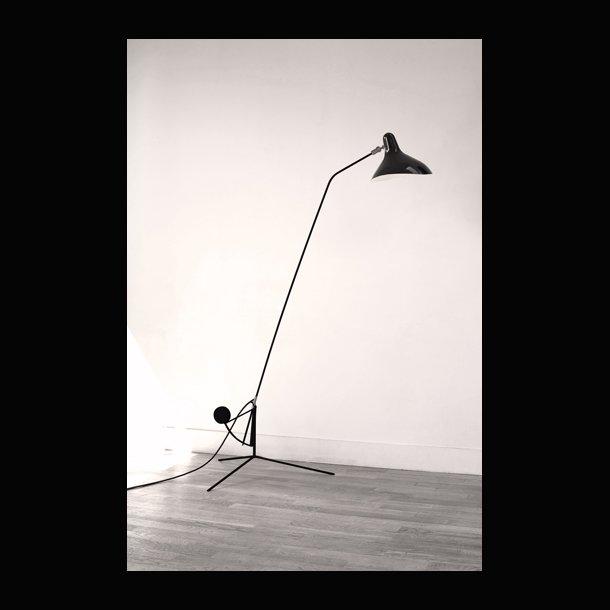 mantis lampe